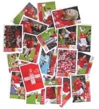 Panini Euro 2008 Poster Sticker P1-P20 Swiss Edition